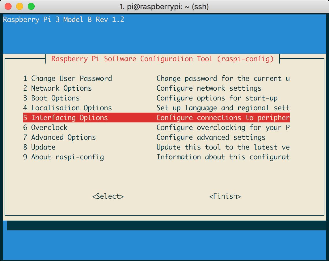 Raspi Config Interface